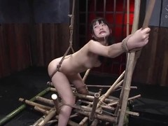 BDSM Anal