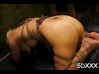 Lascivious Layla Price seems to be a slut with such a blowjob