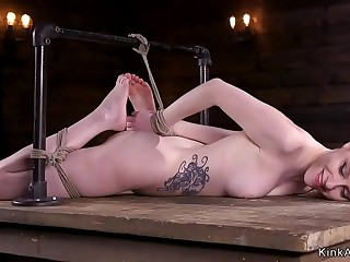 Hogtied tattooed brunette whipped