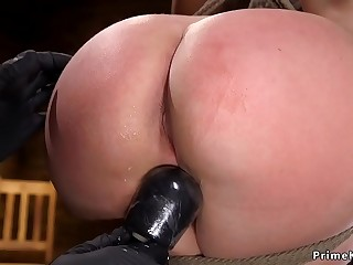 Nips ultra-cute and pussy vibed sub